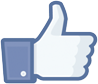 Like Txori on Facebook